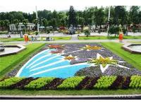 Parkide kujundus