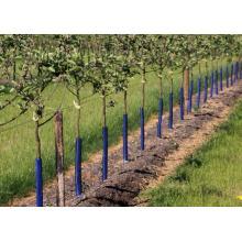 Kaitsevõrk puude jaoks